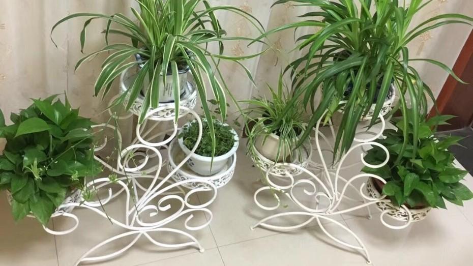 三层白花架