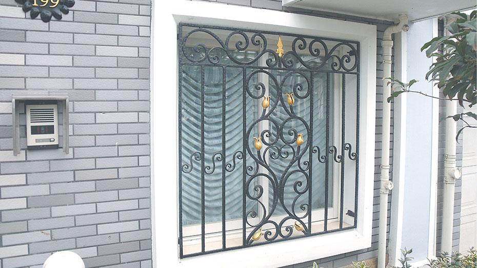 铁艺护窗OP-E009